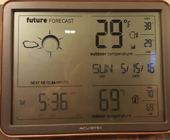 Another hard freeze here in zone 4, Minnesota